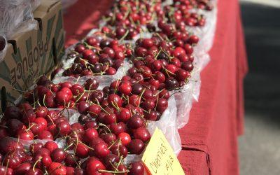 Cherry Calfoutis