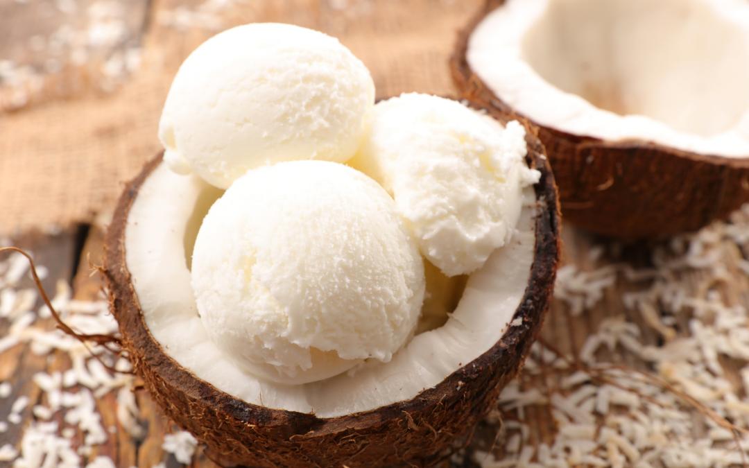 Honey Coconut Ice Cream